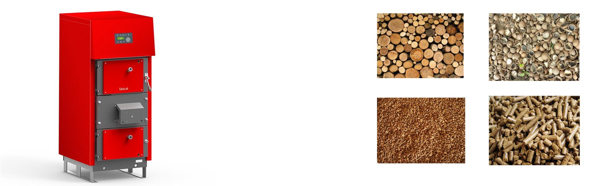 Caldaie Biomassa